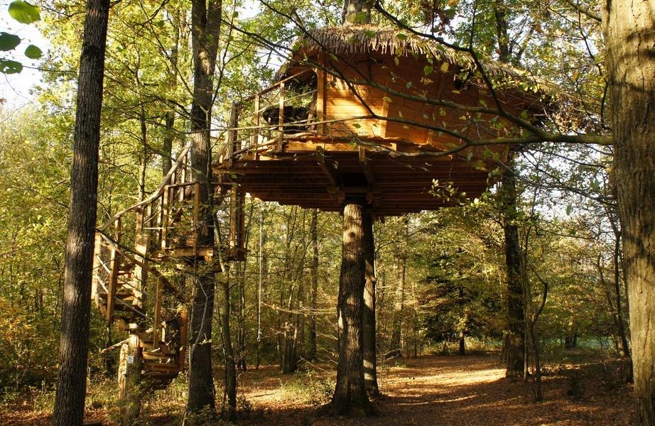 La cabane des cureuils une cabane dans les arbres pour - Cabanes dans les arbres construction deco ...