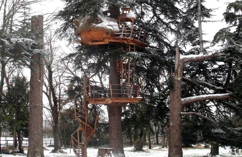cabane-arbre-neige