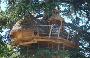La cabane des énigmes, une cabane dans les arbres à 11m de hauteur