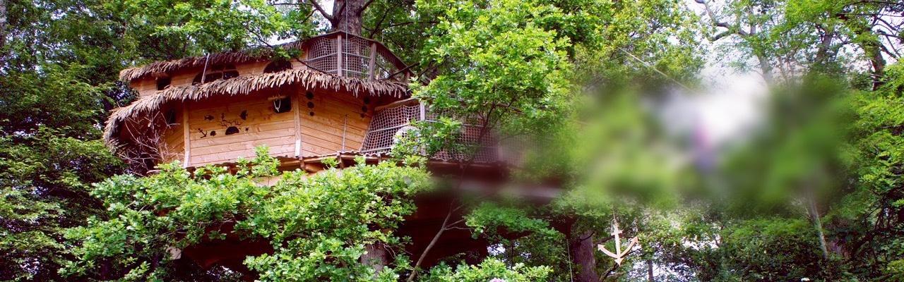 Une cabane dans les arbres pour la famille