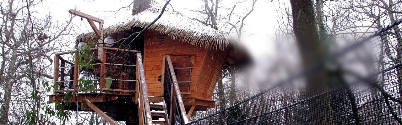 Dormir dans les arbres en hiver près de Bordeaux