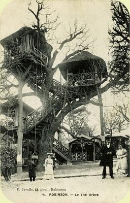 guinguette-plessis-robinson-arbre