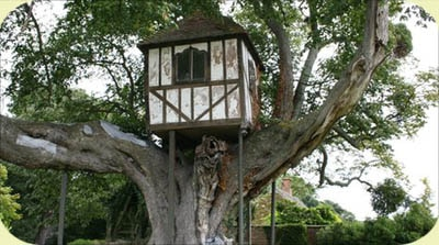 maison-arbre-pitchford-hall